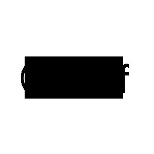 icon-zalf